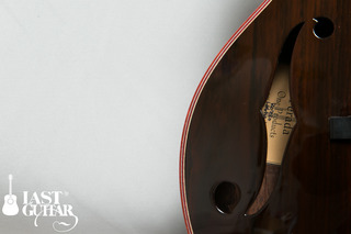 Rozeo Ladybug Ltd 010 (8).JPG