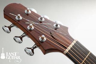 Voyagaer Guitars VA (3).jpg