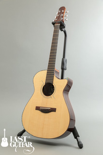 Voyagaer Guitars VA (9).jpg