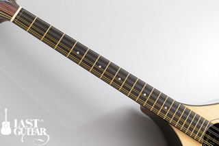 Voyager Guitars Irish Bouzouki--02.jpg