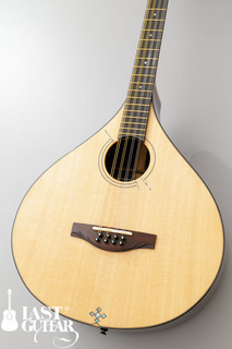 Voyager Guitars Irish Bouzouki--09.jpg