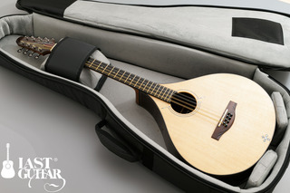 Voyager Guitars Irish Bouzouki--11.jpg