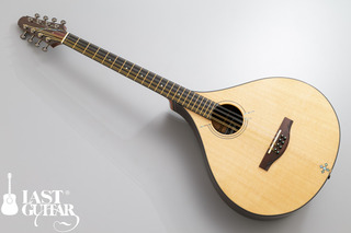 Voyager Guitars Irish Bouzouki.jpg