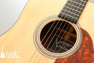 Voyager Guitars TD (10).jpg