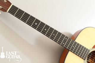 Voyager Guitars TD (2).jpg