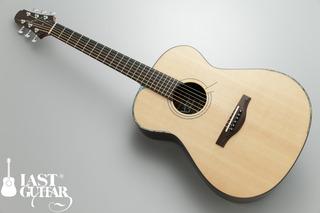 Voyager Guitars VA.jpg