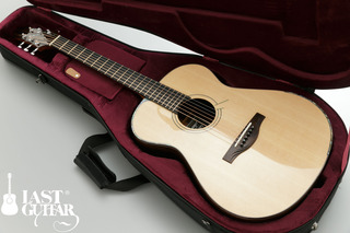 Voyager Guitars VA (11).jpg