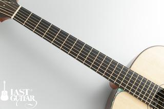 Voyager Guitars VA (2).jpg