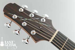 Voyager Guitars VA (3).jpg