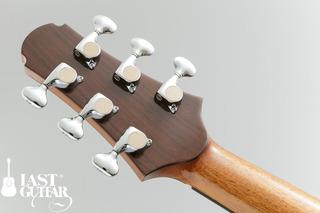 Voyager Guitars VA (4).jpg