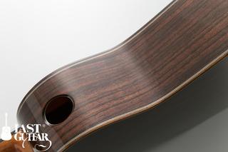 Voyager Guitars VA (8).jpg