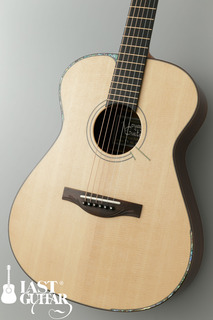 Voyager Guitars VA (9).jpg