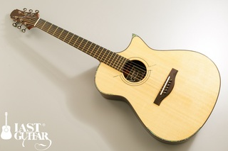 Voyager Guitars VA Wenge Cutaway.jpg