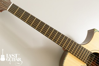 Voyager Guitars VA Wenge Cutaway (2).jpg