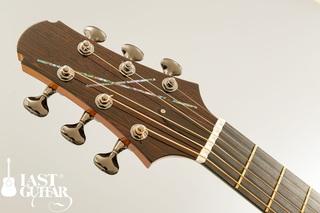 Voyager Guitars VA Wenge Cutaway (3).jpg