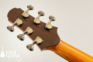 Voyager Guitars VA Wenge Cutaway (4).jpg