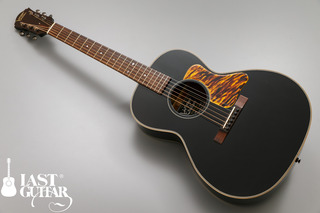 Voyager Guitars VL-00.jpg
