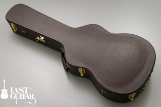 Voyager Guitars VL-00 (10).jpg