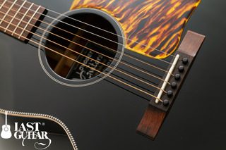Voyager Guitars VL-00 (1).jpg