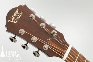 Voyager Guitars VL-00 (3).jpg
