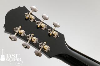 Voyager Guitars VL-00 (4).jpg