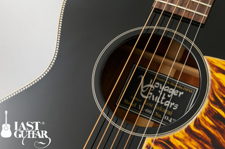 Voyager Guitars VL-00 (8).jpg