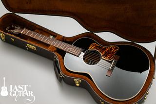 Voyager Guitars VL-00 (9).jpg