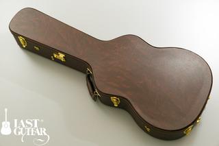Voyager Guitars VL BS (12).jpg