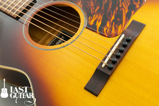 Voyager Guitars VL BS (1).jpg
