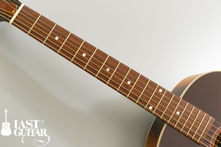Voyager Guitars VL BS (2).jpg