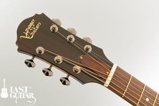 Voyager Guitars VL BS (3).jpg
