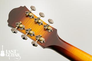 Voyager Guitars VL BS (4).jpg