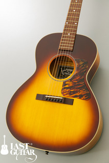 Voyager Guitars VL BS (9).jpg