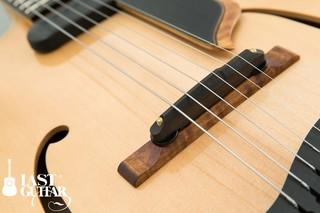 Yamaoka Arcitop Guitars NY-5 (1).jpg