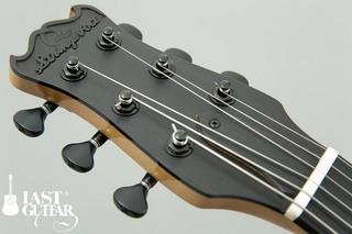 Yamaoka Arcitop Guitars NY-5 (3).jpg